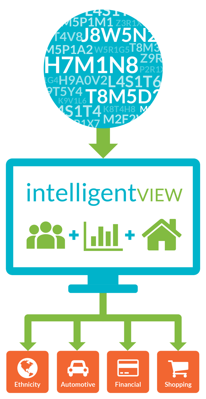 How intelligentVIEW creates insights reporting